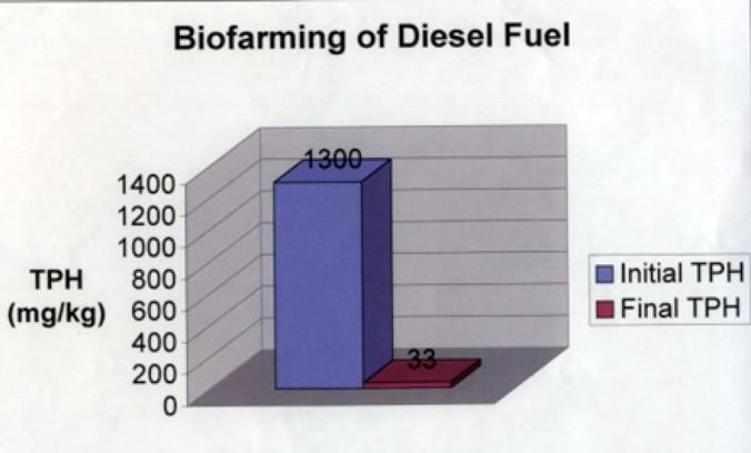 Biofarming of Diesel Fuel