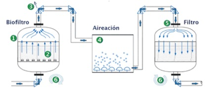 Anaerobic continuous flow reactor